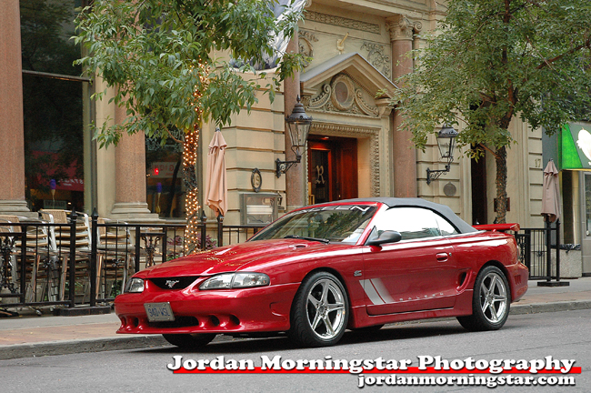 Saleen Mustang in Toronto