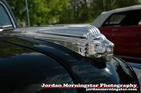 49 Monarch hood ornament