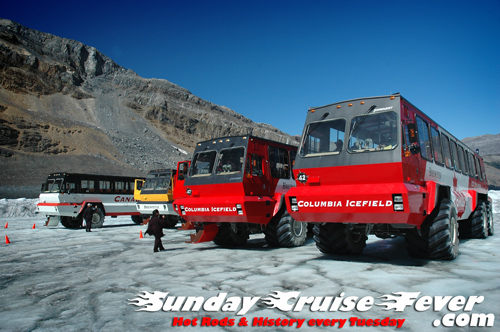 Columbia Icefield buses